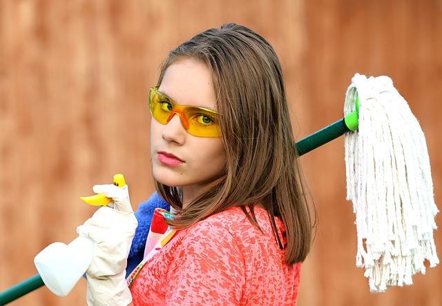 מנקות בתים או חברת ניקיון?