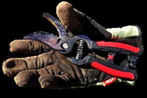 כלי גינון מקצועיים
