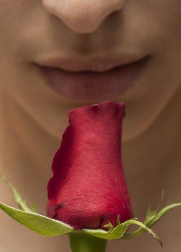 5 סיבות להתחיל להשתמש במפיצי ריח לבית