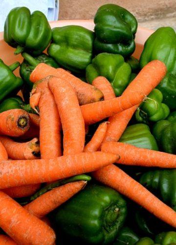 גידול ירקות בבית